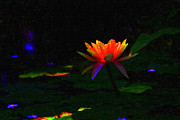Water Lily Digital Art - Water Lily by Wingsdomain Art and Photography