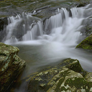 Stokes State Forest Prints - Water Movement 62 Print by Stephen  Vecchiotti