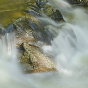 Great Smokey Mountains Prints - Water Movement Detail 15 Print by Stephen  Vecchiotti