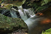 Stokes State Forest Prints - Water Movement-Tillman Ravine Print by Stephen  Vecchiotti