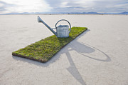 Water Line Photos - Water Pail on Strip of Grass by Thom Gourley/Flatbread Images, LLC