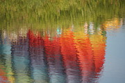 Sally Dougherty - Water Rainbow