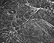 Water Surface Print by Hideaki Sakurai
