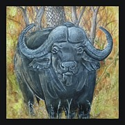 Waterbuffalo Print by Tod Locke