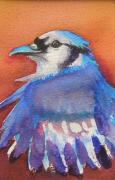 Bluejay Metal Prints - Watercolor Blue Jay Metal Print by Patricia Piffath