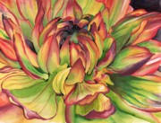 Angela Armano - Watercolor Dahlia