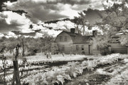 New England Village Art - Watercolor in Black and White by Joann Vitali