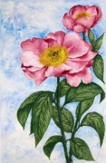 Camellia Paintings - Watercolor Painting of two Camellia Flowers by Evelyn Sichrovsky