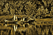 Subtle Colors Prints - Wateree River Relic Print by Lonnie Ray