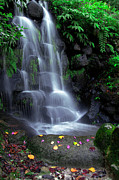 Green Leafs Prints - Waterfall Print by Carlos Caetano
