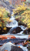 Relaxed Photo Framed Prints - Waterfall in autumn Framed Print by Mircea Costina Photography