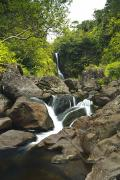 Beautiful Creek Prints - Waterfall in Hana - Maui Print by Quincy Dein - Printscapes