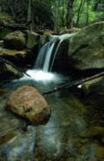 Landscape Greeting Cards Metal Prints - Waterfall in the Woods Metal Print by Kathy Yates