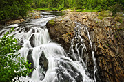 Rushing Metal Prints - Waterfall in wilderness Metal Print by Elena Elisseeva