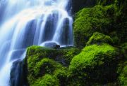 Riversides Prints - Waterfall On Wahkeena Creek, Columbia Print by Natural Selection Craig Tuttle
