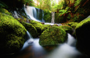 Waterfall Painting Waterfall Prints On Canvas - Horseshoe Waterfalls Print by Frances Leigh