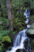Pour Photos - Waterfall Pouring Down Mountainside by Natural Selection Robert Cable