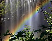 Waterfall Rainbow Print by Marty Koch