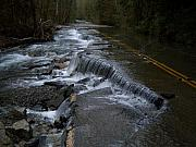 Ken Day - Waterfall Road Washington