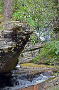 Susan Leggett Prints - Waterfall Rock Print by Susan Leggett