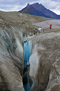Root Originals - Waterfall Root Glacier by Alan Lenk