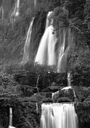 Serene Photo Posters - Waterfall Poster by Setsiri Silapasuwanchai