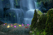 Picturesque Art - Waterfall02 by Carlos Caetano