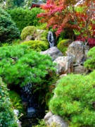 Red Leaves Posters - Waterfalls in Japanese Garden Poster by Carol Groenen