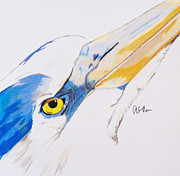 Waterfowl Paintings - Waterfowl Series  Heron by Steve Teets