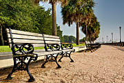 Lowcountry Prints - Waterfront Park Bench  Print by Drew Castelhano