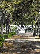 Park Benches Photo Originals - Waterfront Park Fountain by Blanche Knake
