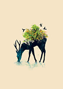 Deer Drinking Water Posters - Watering A life into itself Poster by Budi Satria Kwan