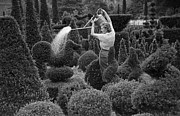Mid Adult Women Prints - Watering At Kew Print by Kurt Hutton