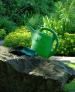 Garden Ornaments Posters - Watering Can Gloves Poster by Joyce StJames