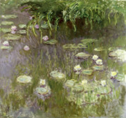 Pads Painting Metal Prints - Waterlilies at Midday Metal Print by Claude Monet