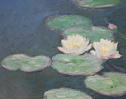 Close Up Painting Posters - Waterlilies Poster by Claude Monet