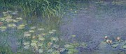 Nympheas Metal Prints - Waterlilies Morning Metal Print by Claude Monet