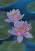 Taide Prints - Waterlillies Print by M S