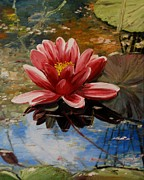 Oil On Canvas Prints - Waterlily Pond I Print by Alla Dickson