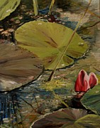Waterlily Poster Posters - Waterlily Pond II Poster by Alla Dickson