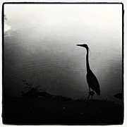 Instagramhub Photos - Waters Edge by Dave Edens