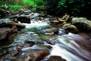 Rushing Water Prints - Watoga State Park Print by Thomas R Fletcher
