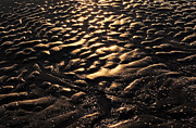Surf Silhouette Metal Prints - Wave Of Sand Metal Print by Setsiri Silapasuwanchai