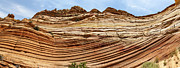 Sculpted Tree Photos - Wave Sculptured Sandstone Panorama by Scott Hansen