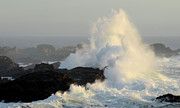 Thelightscene Prints - Waves At Salt Point Print by Bob Christopher