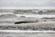 Botanical Beach Prints - Waves Crash Ashore Over Reefs Print by Taylor S. Kennedy