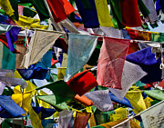 Tibetan Buddhism Posters - Waving Prayer Flags Poster by Don Schwartz