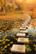 Fall Foliage Photo Posters - Way in the Lake Poster by Evgeni Dinev