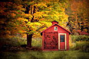 Country Scenes Art - Way Out by Emily Stauring