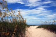 Beaches In Florida Prints - Way out to The Beach Print by Susanne Van Hulst